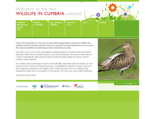 WILDLIFE IN CUMBRIA